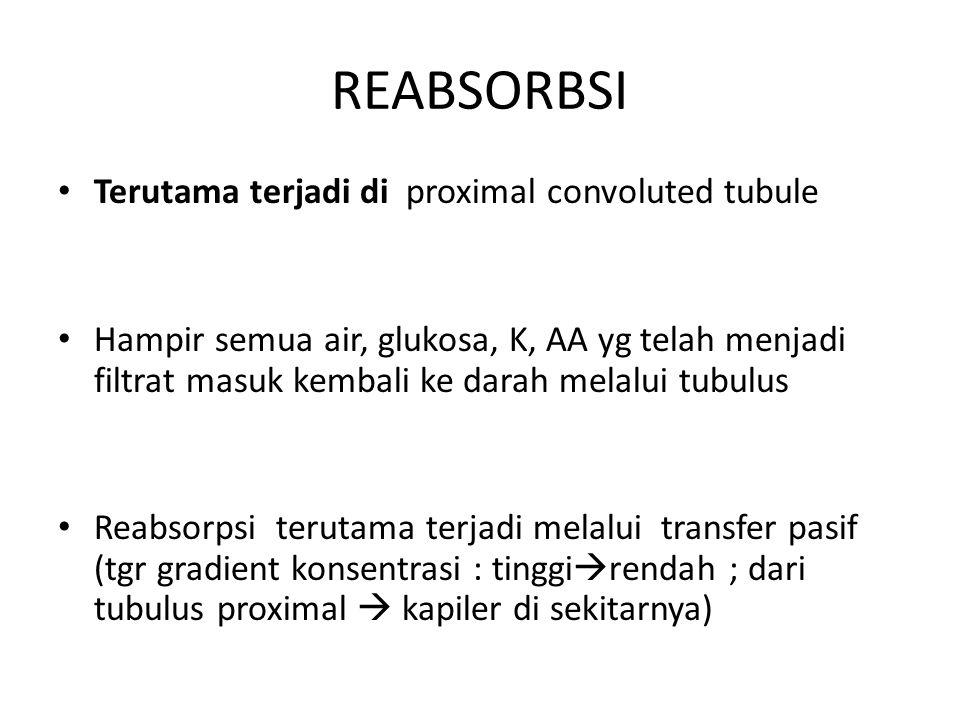REABSORBSI Terutama terjadi di proximal convoluted tubule