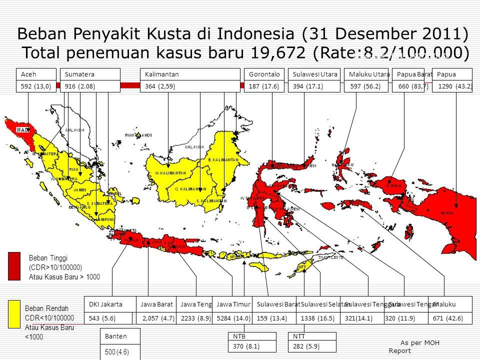 Beban Penyakit Kusta di Indonesia (31 Desember 2011) Total penemuan kasus baru 19,672 (Rate:8.2/100.000)