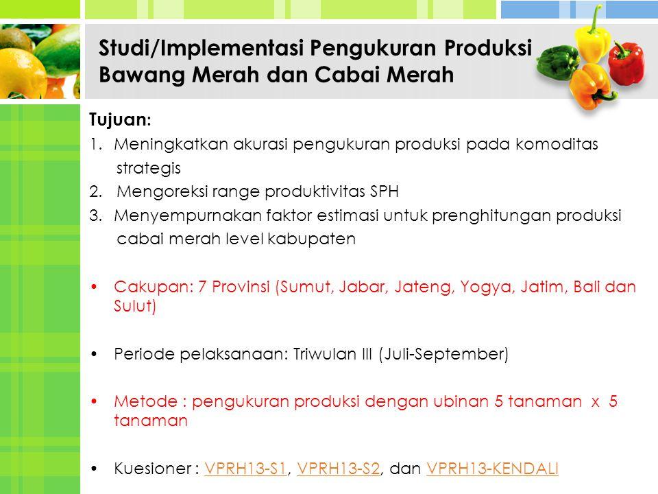 Studi/Implementasi Pengukuran Produksi Bawang Merah dan Cabai Merah