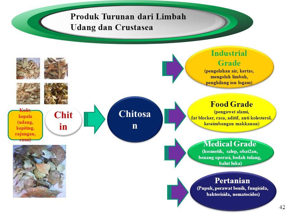 Chitosan Chitin Produk Turunan dari Limbah Udang dan Crustasea