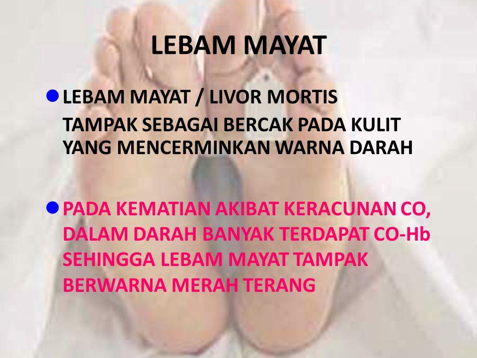 LEBAM MAYAT LEBAM MAYAT / LIVOR MORTIS