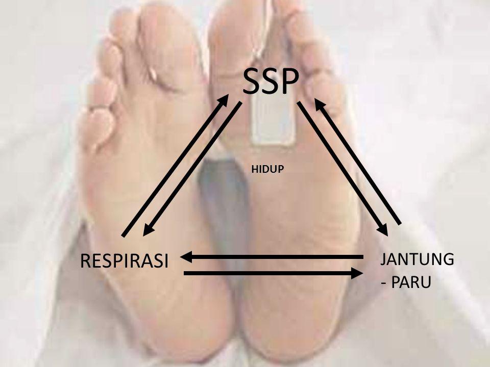 SSP HIDUP RESPIRASI JANTUNG - PARU
