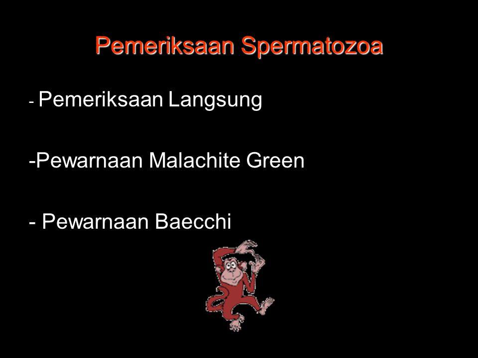 Pemeriksaan Spermatozoa