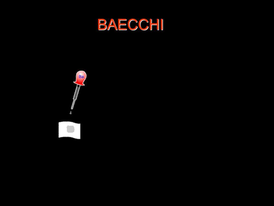 BAECCHI