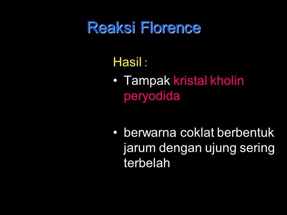 Reaksi Florence Hasil : Tampak kristal kholin peryodida