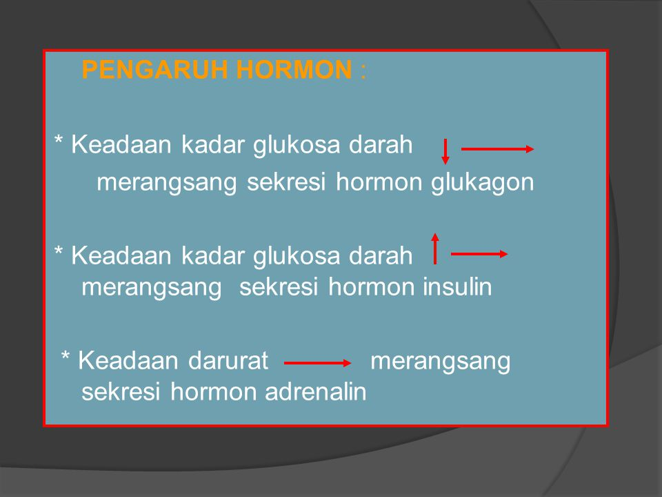PENGARUH HORMON : * Keadaan kadar glukosa darah. merangsang sekresi hormon glukagon.