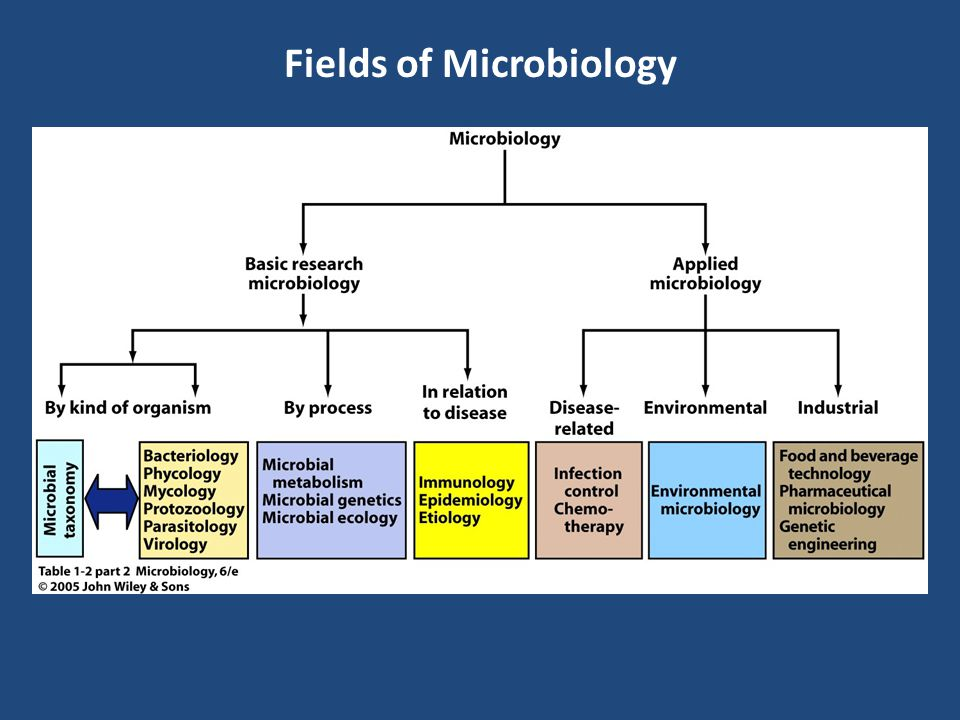 Fields of Microbiology