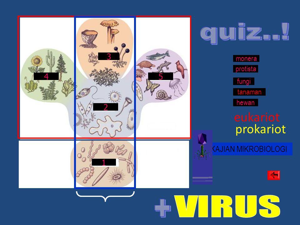 quiz..! + eukariot prokariot 3 4 5 2 KAJIAN MIKROBIOLOGI 1 monera