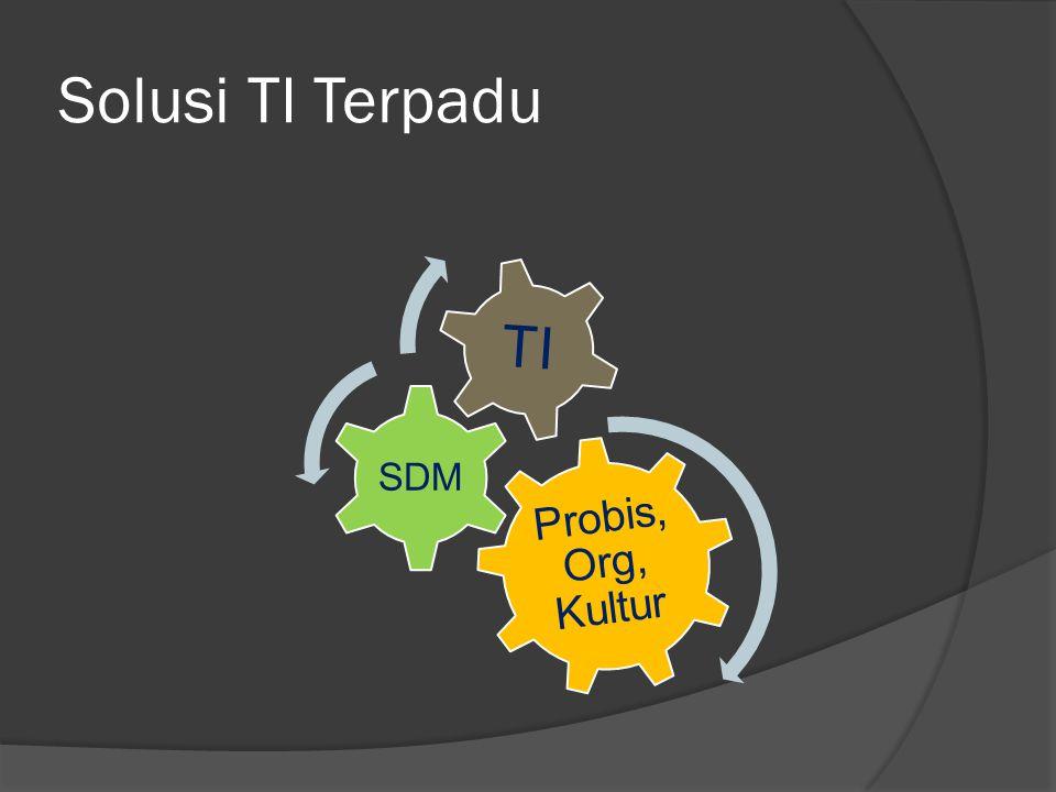 Solusi TI Terpadu Probis, Org, Kultur SDM TI