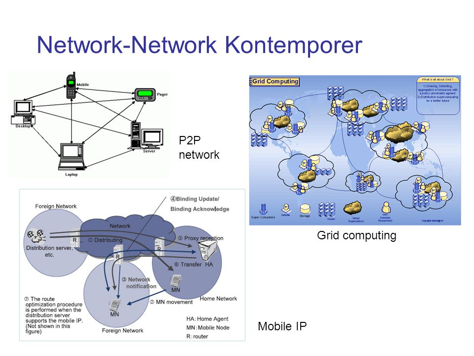 Network-Network Kontemporer