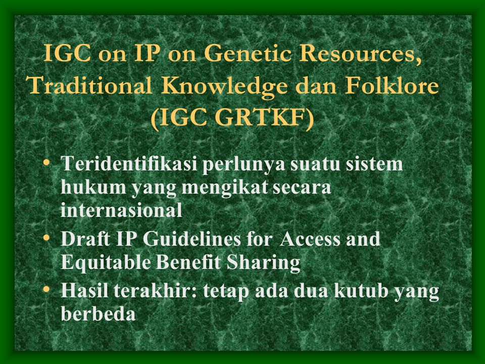 IGC on IP on Genetic Resources, Traditional Knowledge dan Folklore (IGC GRTKF)