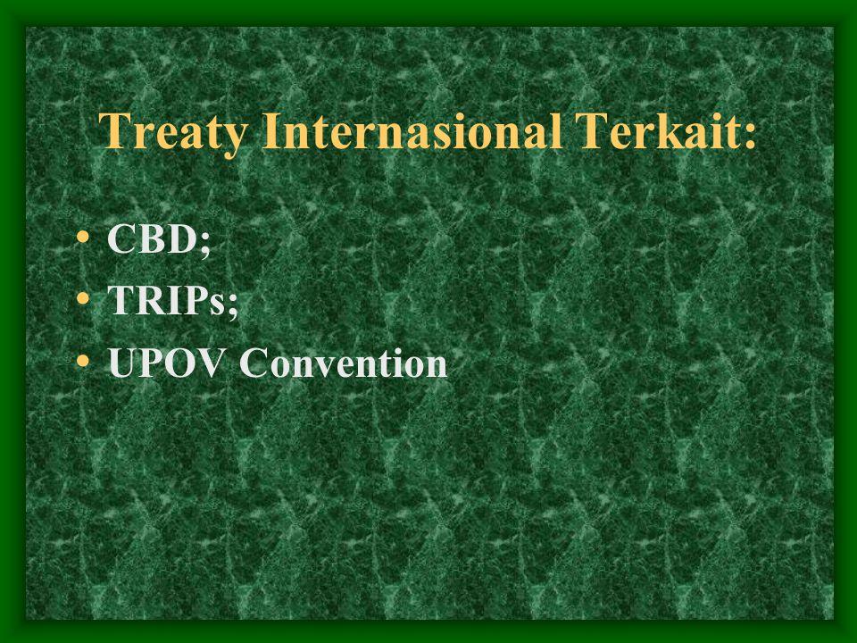 Treaty Internasional Terkait: