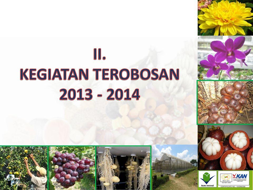 II. KEGIATAN TEROBOSAN 2013 - 2014