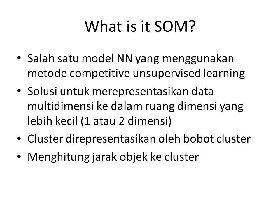What is it SOM Salah satu model NN yang menggunakan metode competitive unsupervised learning.