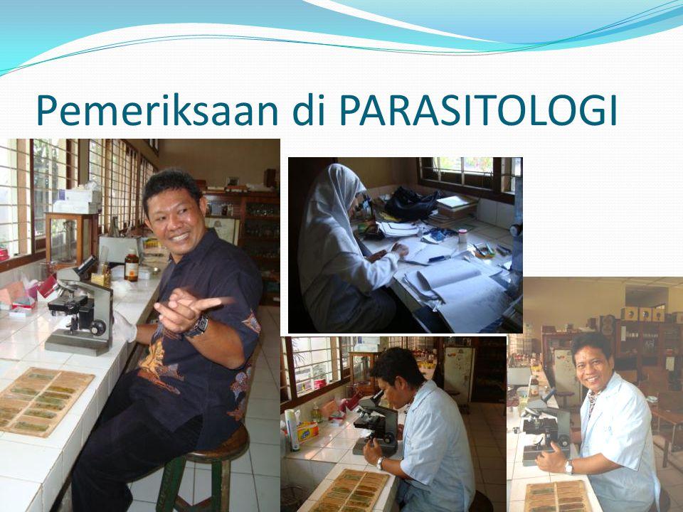 Pemeriksaan di PARASITOLOGI