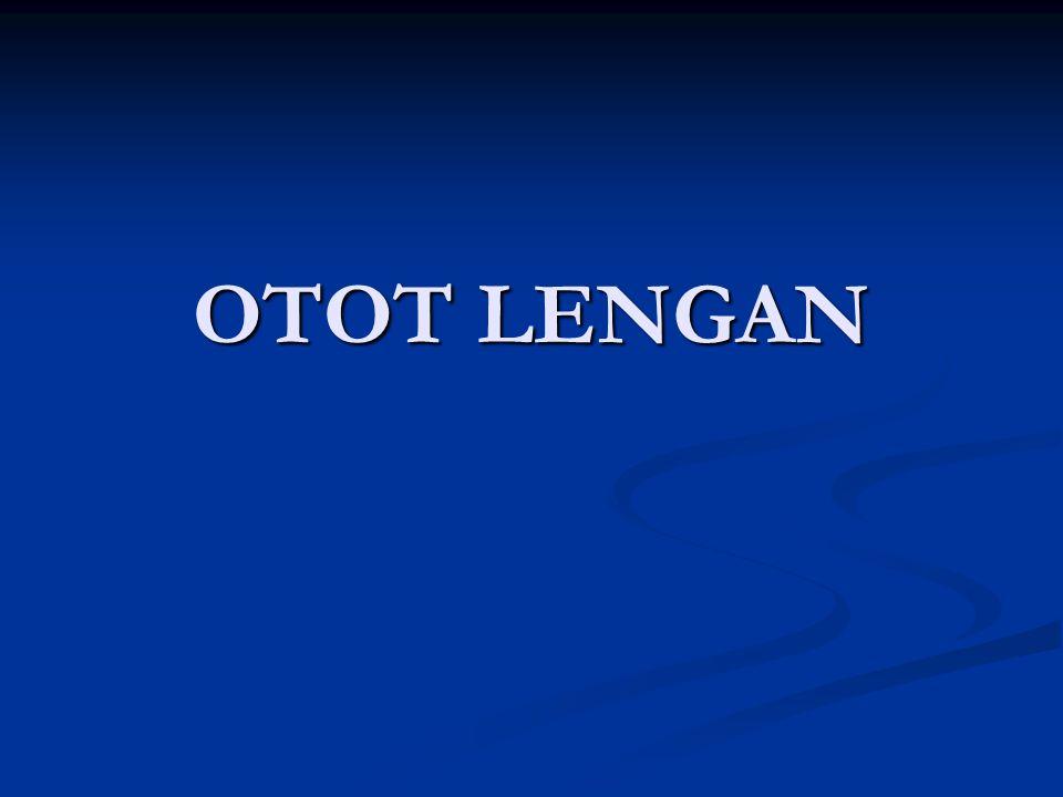 OTOT LENGAN
