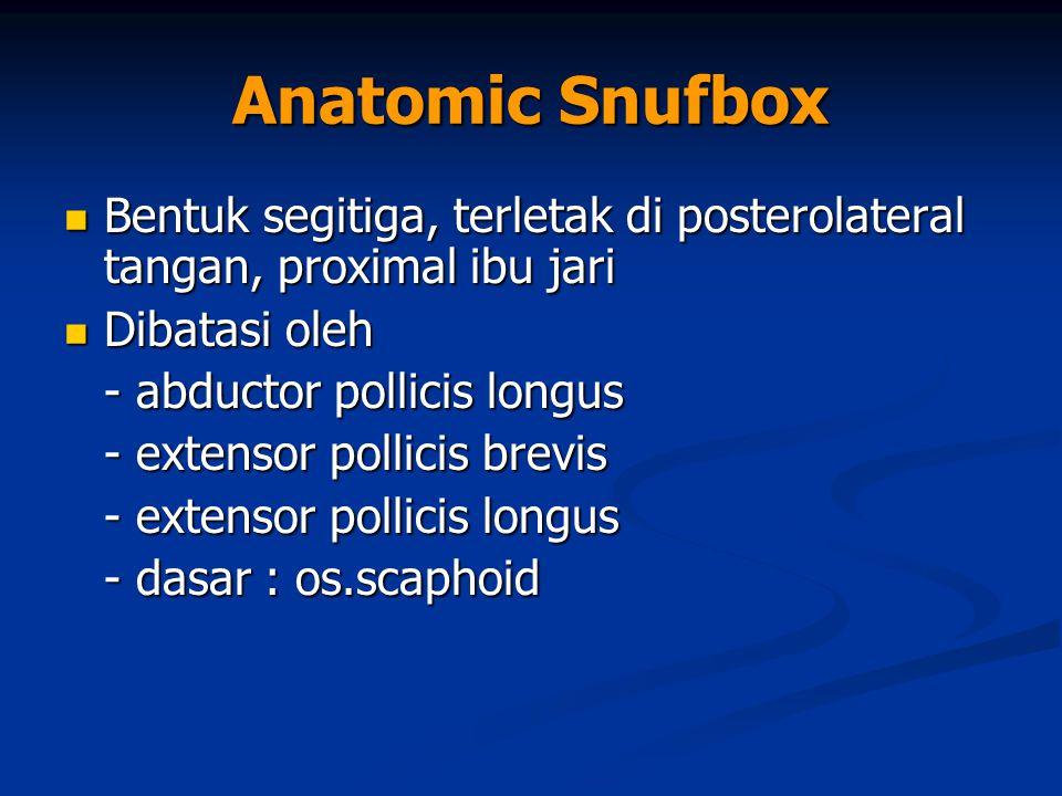 Anatomic Snufbox Bentuk segitiga, terletak di posterolateral tangan, proximal ibu jari. Dibatasi oleh.