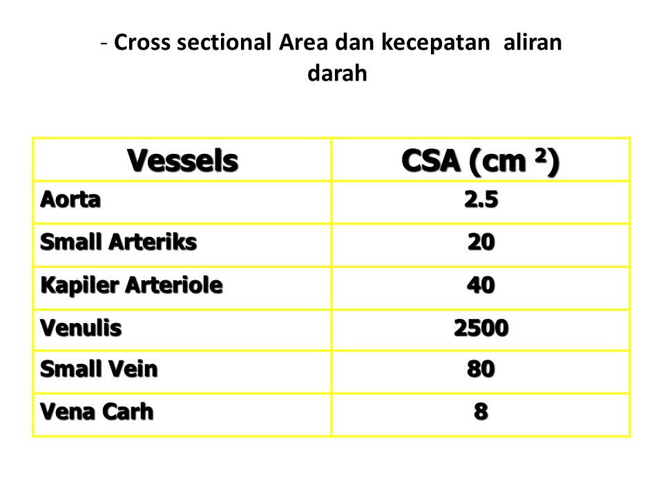 Cross sectional Area dan kecepatan aliran darah