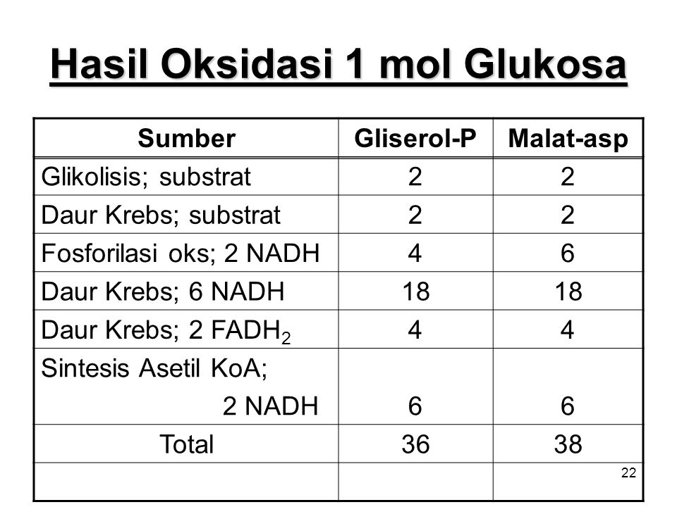 Hasil Oksidasi 1 mol Glukosa