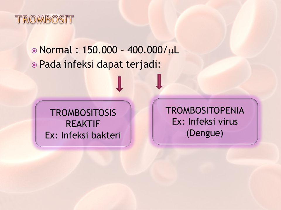 TROMBOSIT Normal : 150.000 – 400.000/L Pada infeksi dapat terjadi: