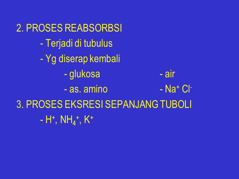 2. PROSES REABSORBSI - Terjadi di tubulus. - Yg diserap kembali. - glukosa - air. - as. amino - Na+ Cl-