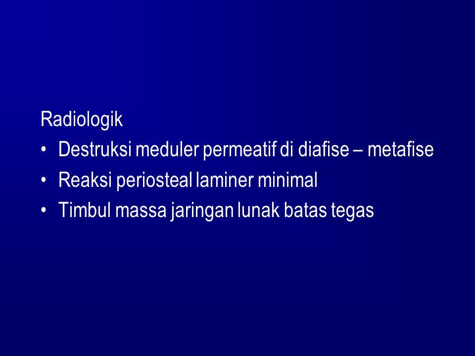 Radiologik Destruksi meduler permeatif di diafise – metafise.