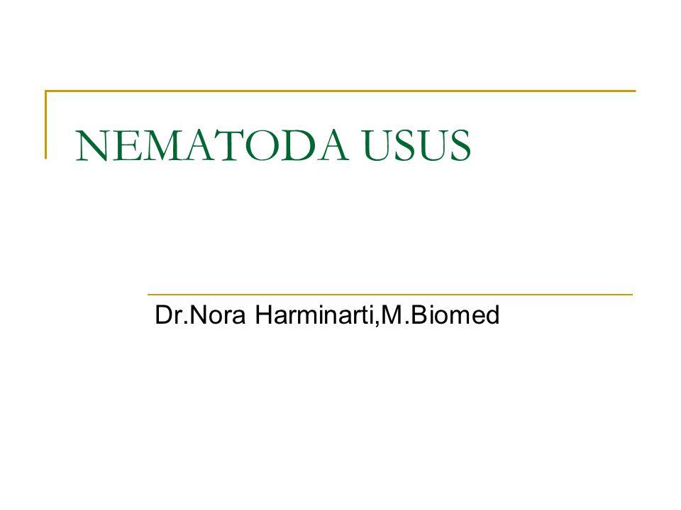 Dr.Nora Harminarti,M.Biomed