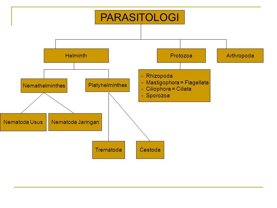 PARASITOLOGI Helminth Protozoa Arthropoda Rhizopoda