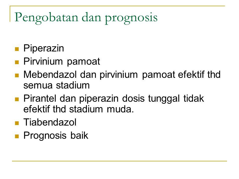 Pengobatan dan prognosis