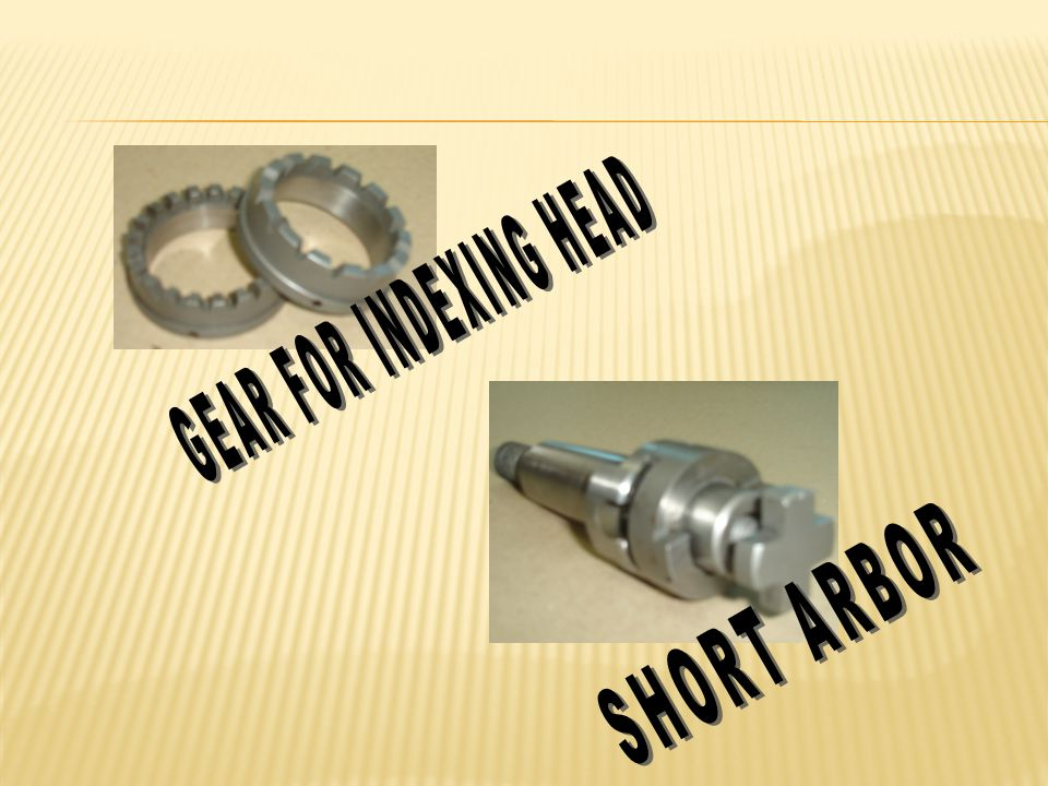 GEAR FOR INDEXING HEAD SHORT ARBOR