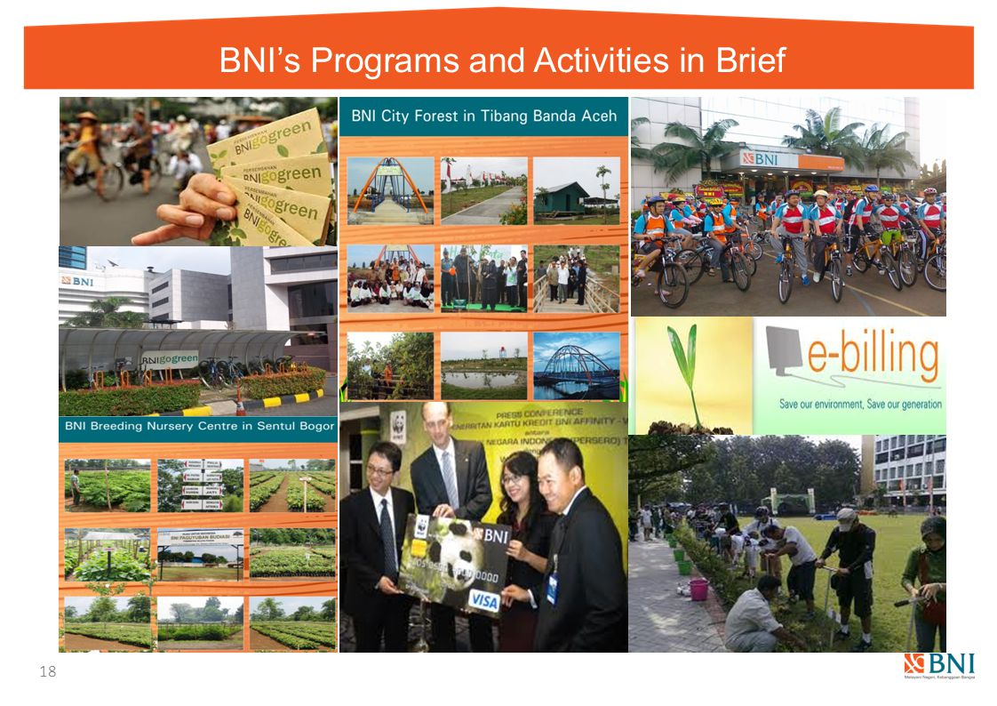 BNI's Programs and Activities in Brief