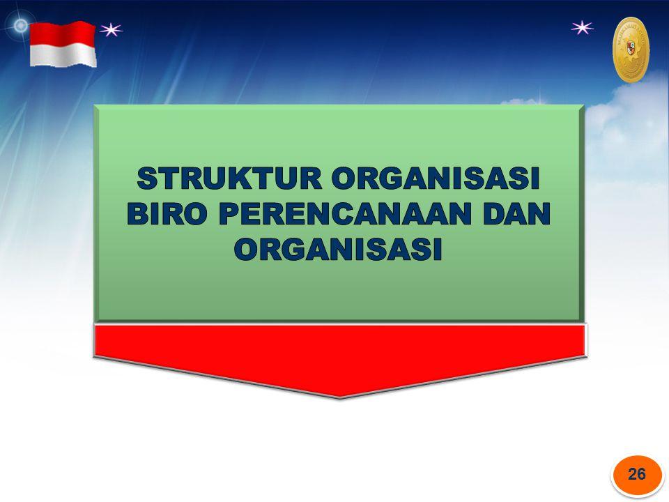 STRUKTUR ORGANISASI BIRO PERENCANAAN DAN ORGANISASI