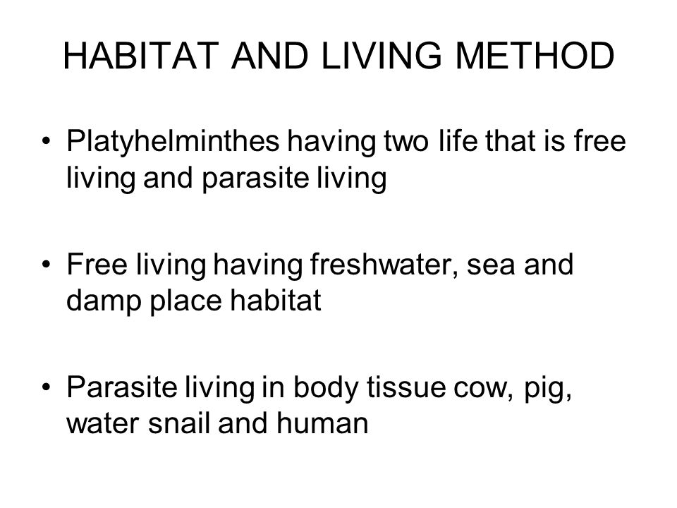 HABITAT AND LIVING METHOD