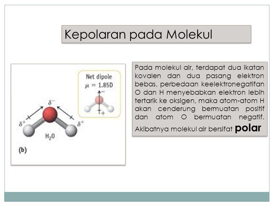 Kepolaran pada Molekul