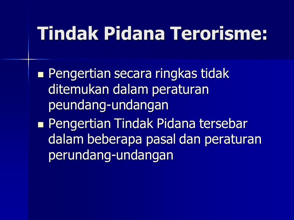 Tindak Pidana Terorisme: