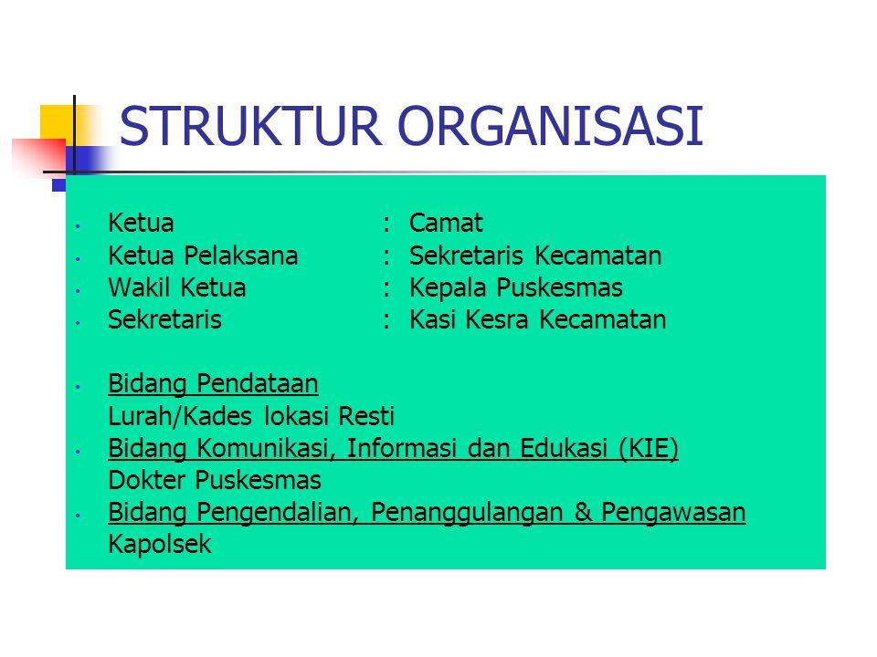 STRUKTUR ORGANISASI Ketua : Camat