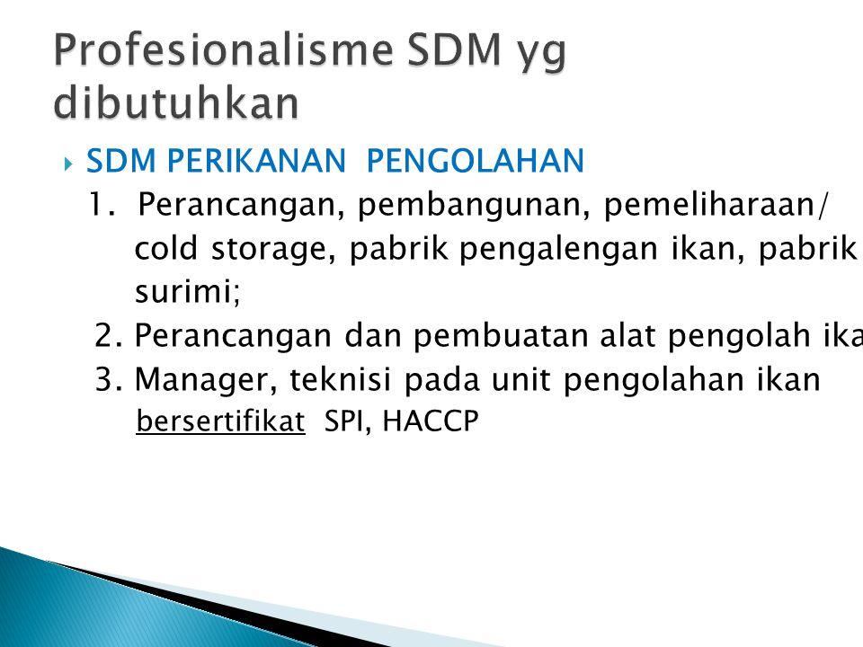 Profesionalisme SDM yg dibutuhkan