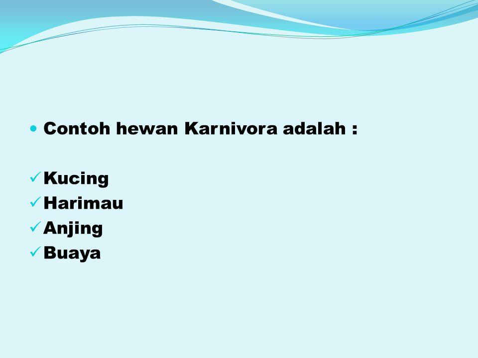 Contoh hewan Karnivora adalah :