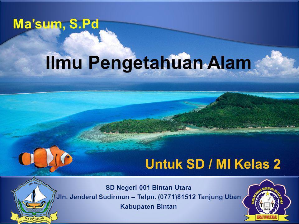 Jln. Jenderal Sudirman – Telpn. (0771)81512 Tanjung Uban