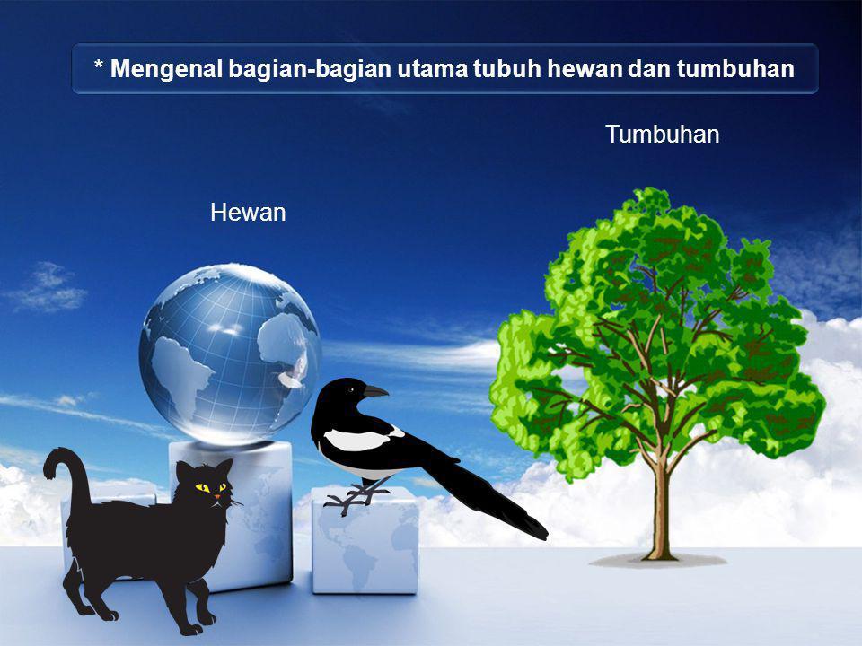 * Mengenal bagian-bagian utama tubuh hewan dan tumbuhan