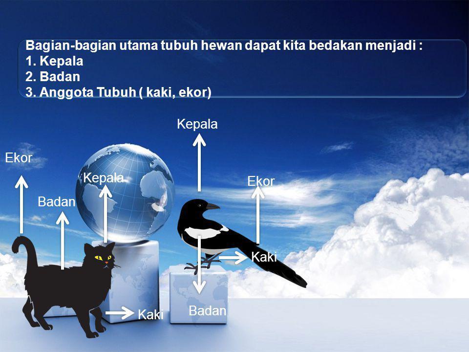 Bagian-bagian utama tubuh hewan dapat kita bedakan menjadi :