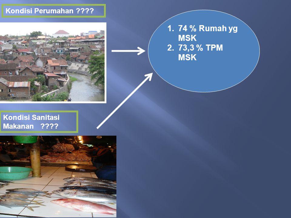 74 % Rumah yg MSK 73,3 % TPM MSK Kondisi Perumahan