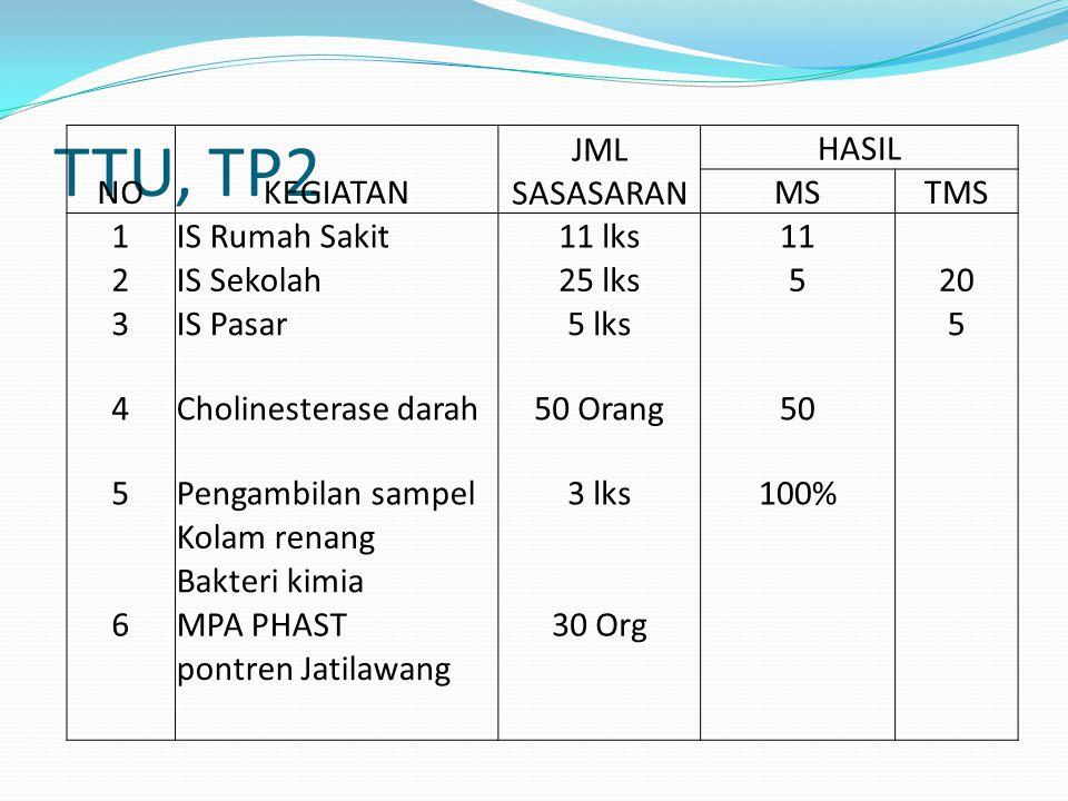 TTU, TP2 NO KEGIATAN JML SASASARAN HASIL MS TMS 1 IS Rumah Sakit