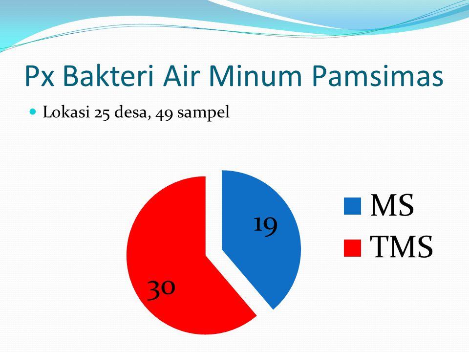 Px Bakteri Air Minum Pamsimas