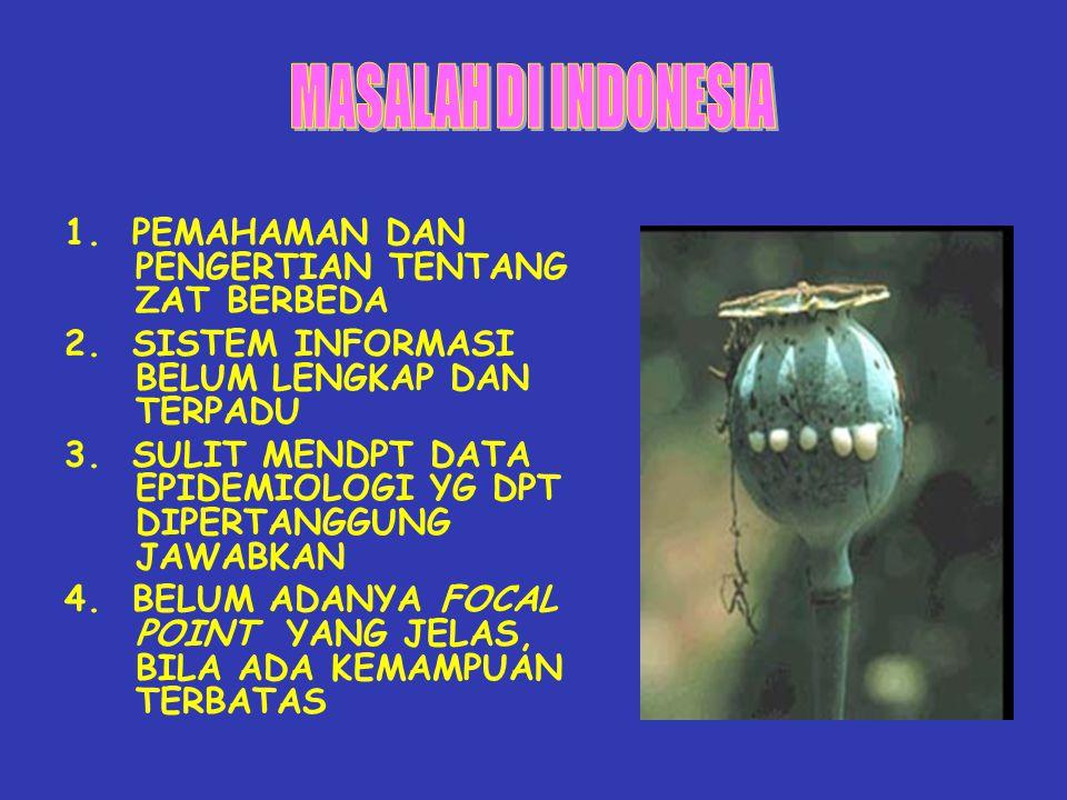 MASALAH DI INDONESIA 1. PEMAHAMAN DAN PENGERTIAN TENTANG ZAT BERBEDA