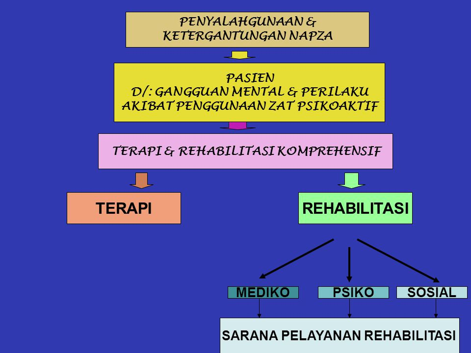 TERAPI REHABILITASI MEDIKO PSIKO SOSIAL SARANA PELAYANAN REHABILITASI
