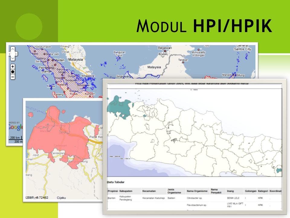 Modul HPI/HPIK
