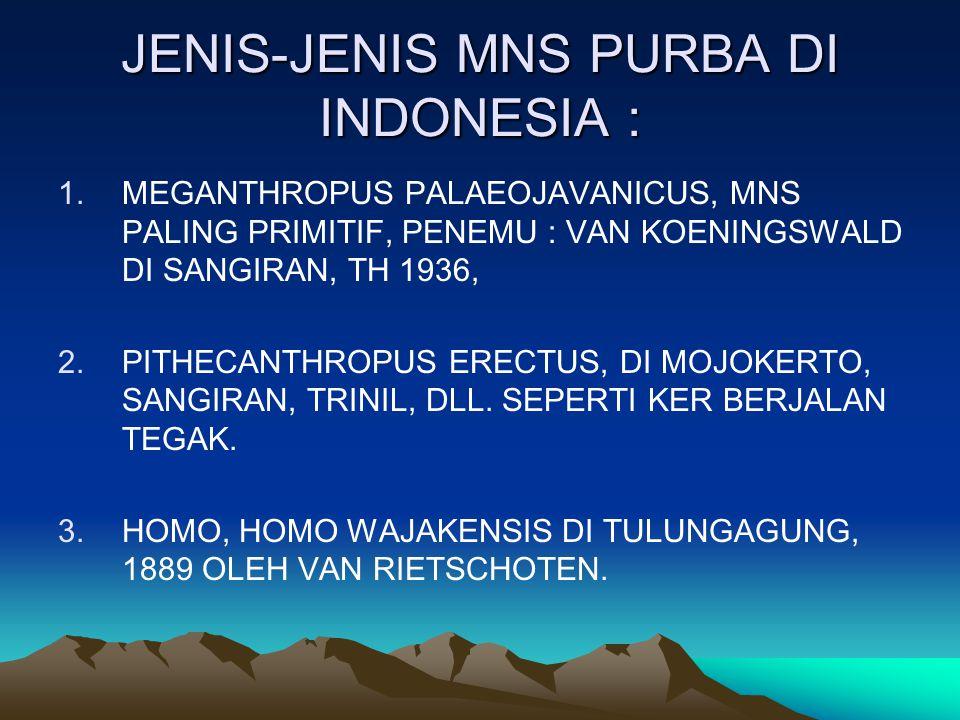 JENIS-JENIS MNS PURBA DI INDONESIA :