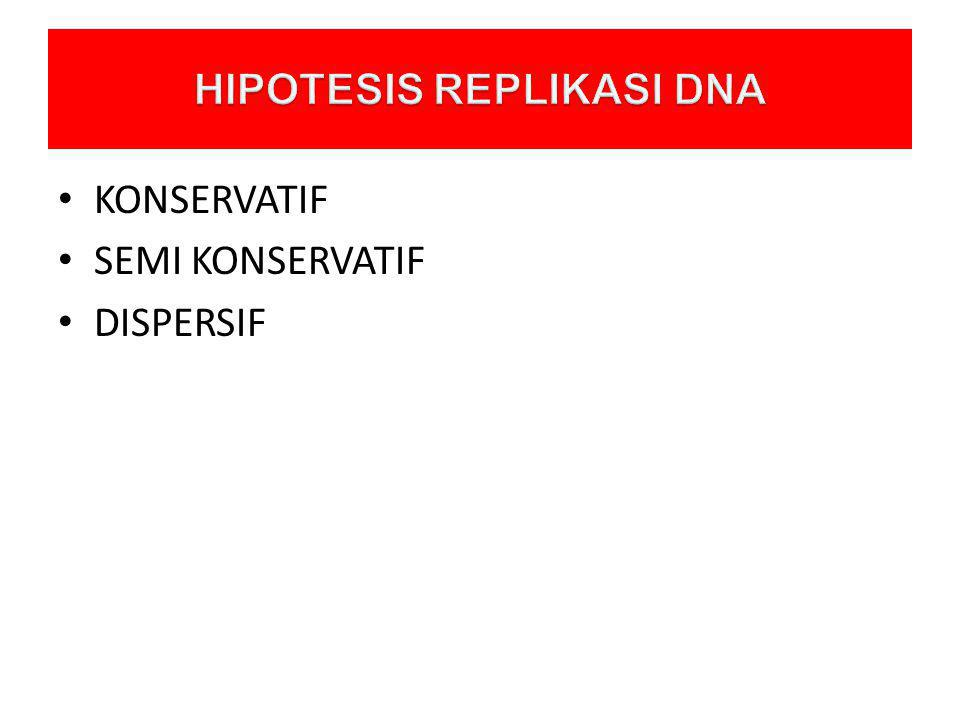HIPOTESIS REPLIKASI DNA