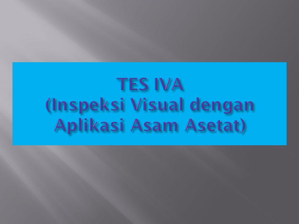 TES IVA (Inspeksi Visual dengan Aplikasi Asam Asetat)